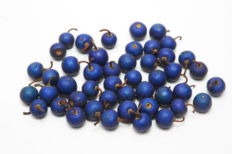 Bacche di colore blu che contengono i semi di rudraksha